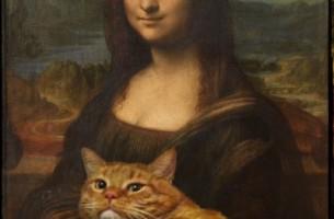 Zarathustra ist eine sehr fette Katze