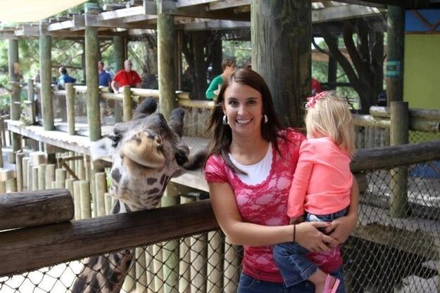 The Gorgeous Giraffe.