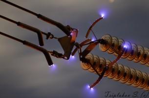 Elektro-Blitze am Nachthimmel