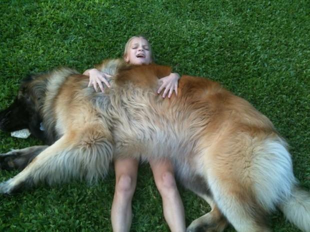 hund (15)