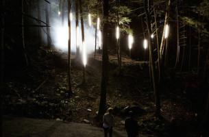Der beleuchtete Wald: Foresta Lumina