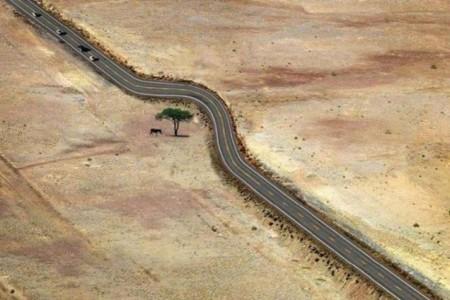 16 Beispiele, wie man mit der Natur umgehen sollte